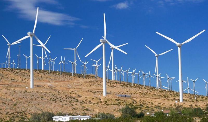 Nordeste é destaque na produção de energia eólica